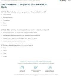 print extracellular matrix function components definition worksheet [ 1140 x 1243 Pixel ]