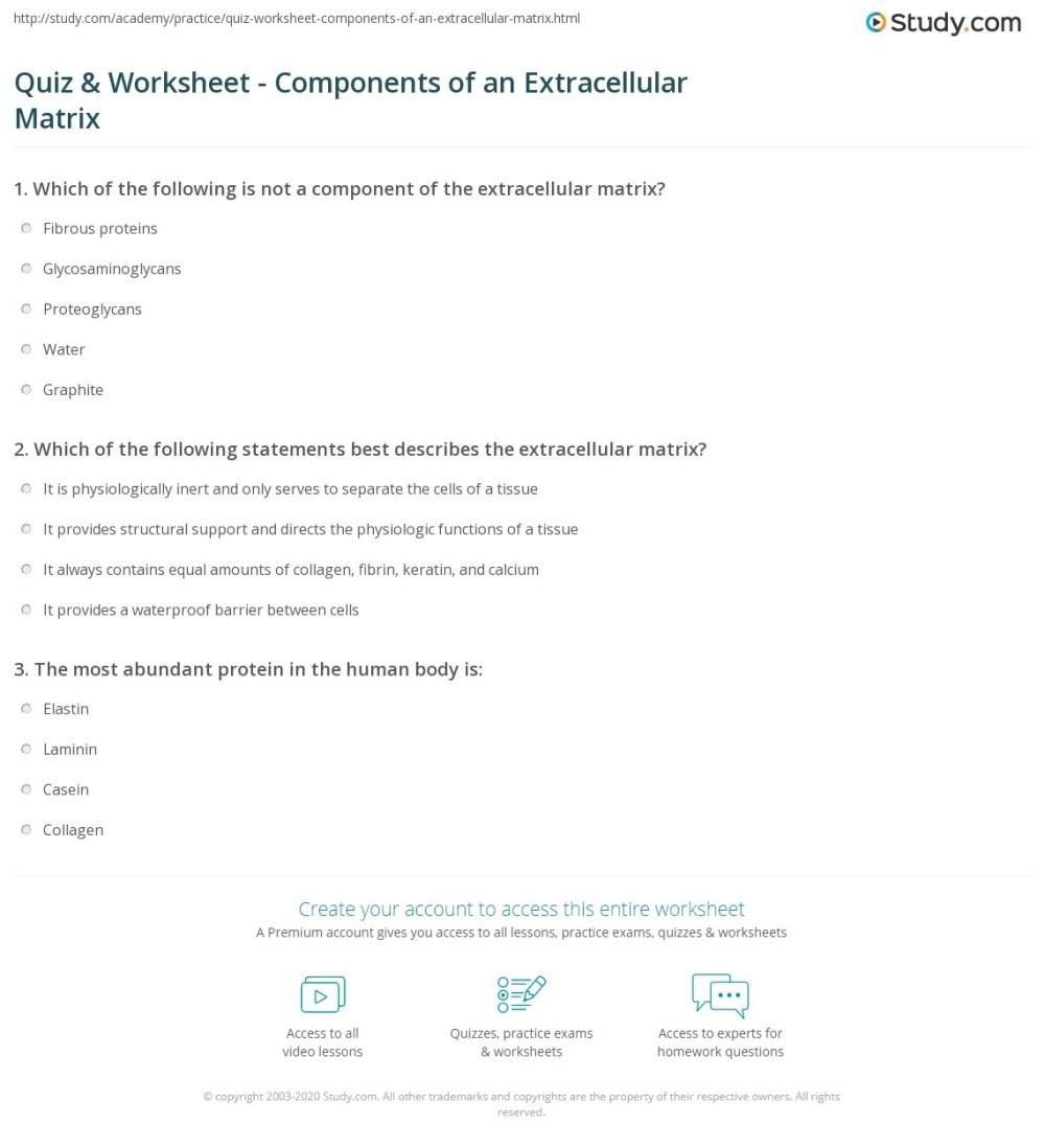 medium resolution of print extracellular matrix function components definition worksheet