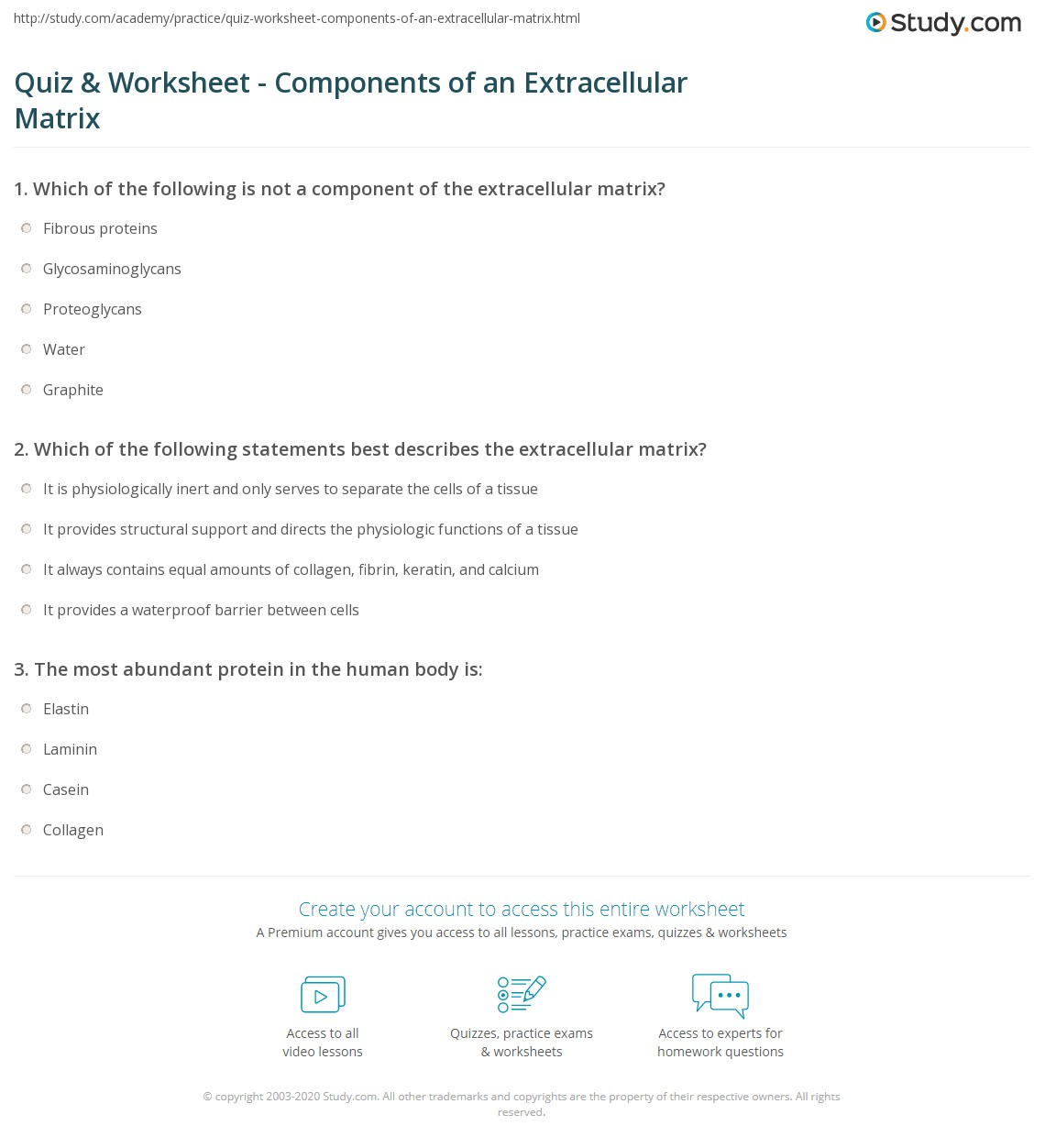 hight resolution of print extracellular matrix function components definition worksheet