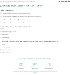 print the coniferous forest food web worksheet [ 1140 x 1191 Pixel ]