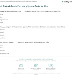 Quiz \u0026 Worksheet - Excretory System Facts for Kids   Study.com [ 1121 x 1140 Pixel ]