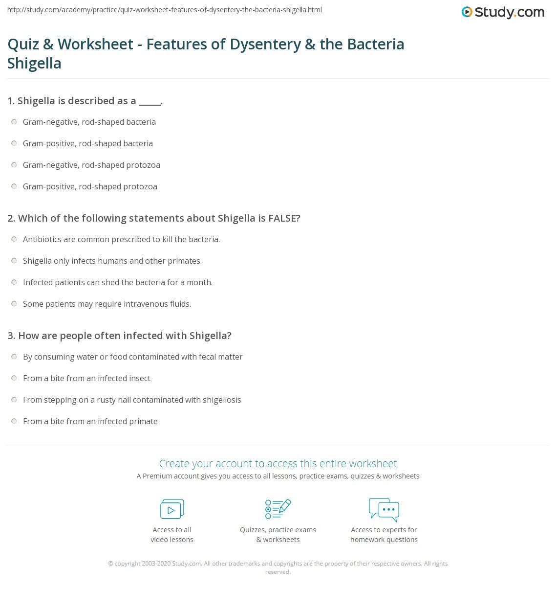 Immune System Worksheet 1 Answers