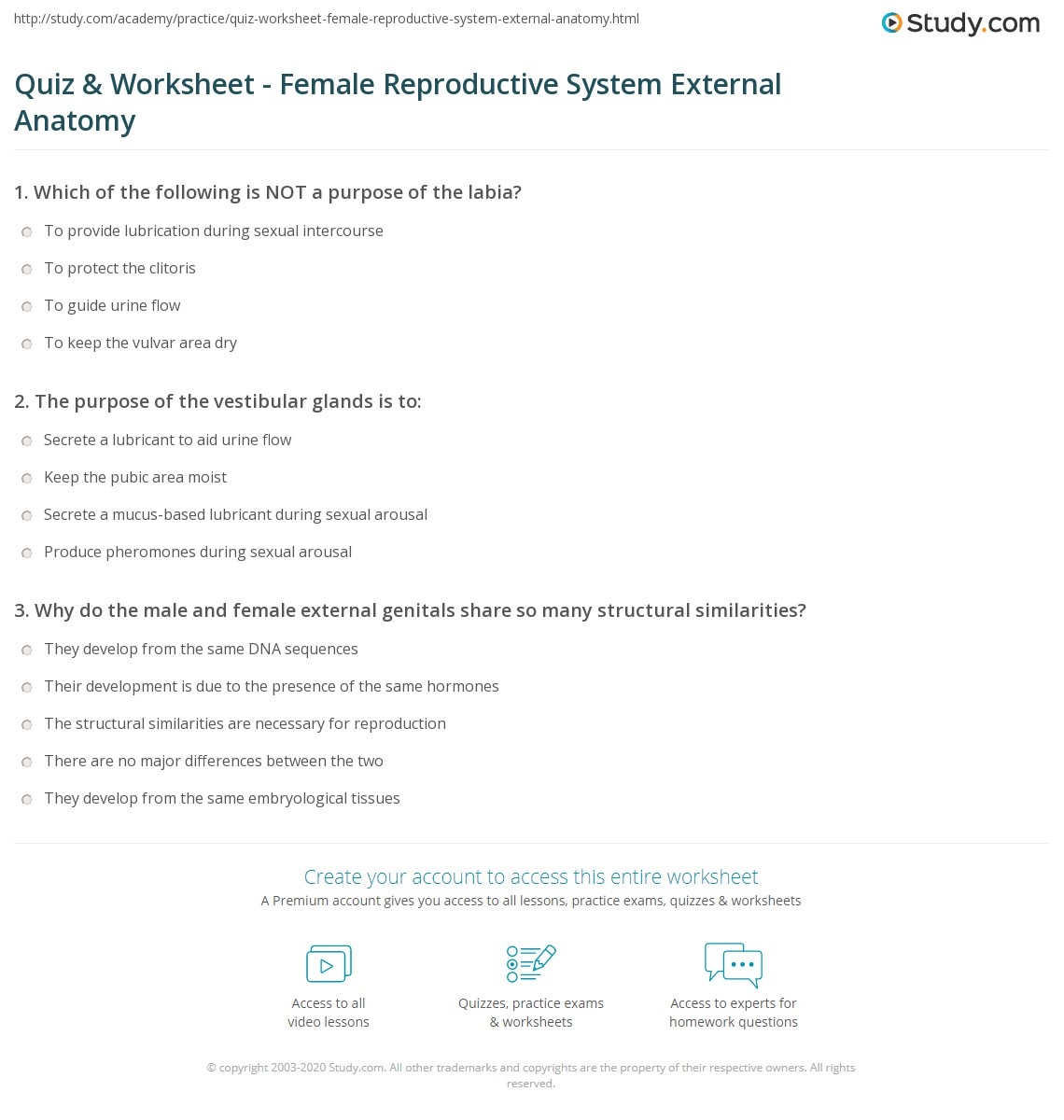 Reproductive Diagram Quiz Male Anatomy Worksheet Answers 763612