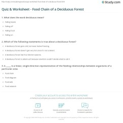 Deciduous Forest Food Chain Diagram 700r4 Lockup Wiring Quiz And Worksheet Of A
