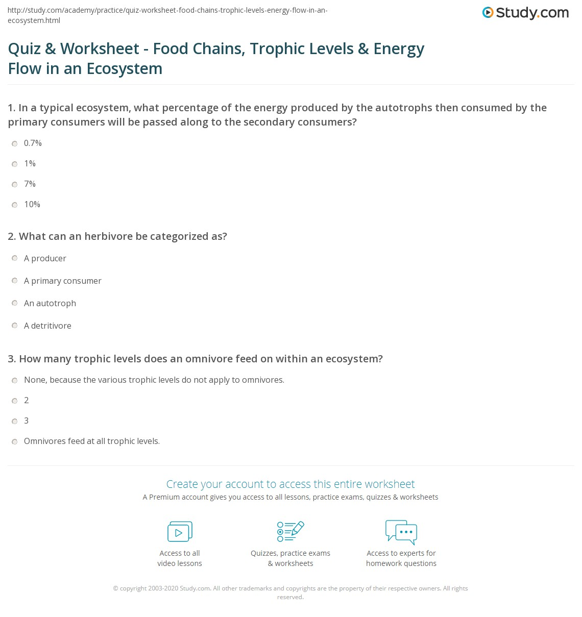 Energy Flow Through An Ecosystem Worksheet