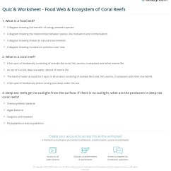 Coral Reef Food Chain Diagram Golf 5 Radio Wiring Quiz Worksheet Web Ecosystem Of Reefs Study Com Print The