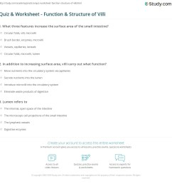 print villi function definition structure worksheet [ 1140 x 1149 Pixel ]