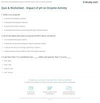Quiz & Worksheet - Impact of pH on Enzyme Activity | Study.com