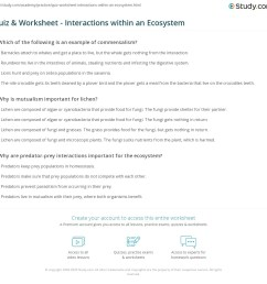 32 Ecology Interactions Within The Environment Worksheet Answers - Worksheet  Project List [ 1121 x 1140 Pixel ]