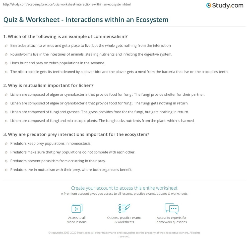 medium resolution of 32 Ecology Interactions Within The Environment Worksheet Answers - Worksheet  Project List