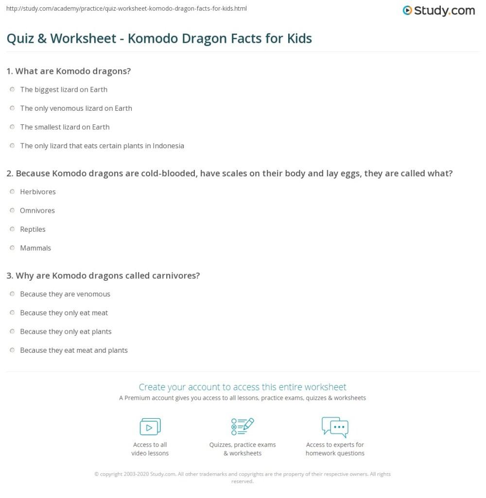 medium resolution of Komodo Dragon Worksheet