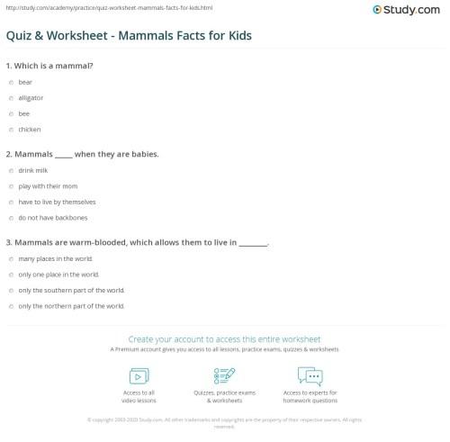 small resolution of Quiz \u0026 Worksheet - Mammals Facts for Kids   Study.com