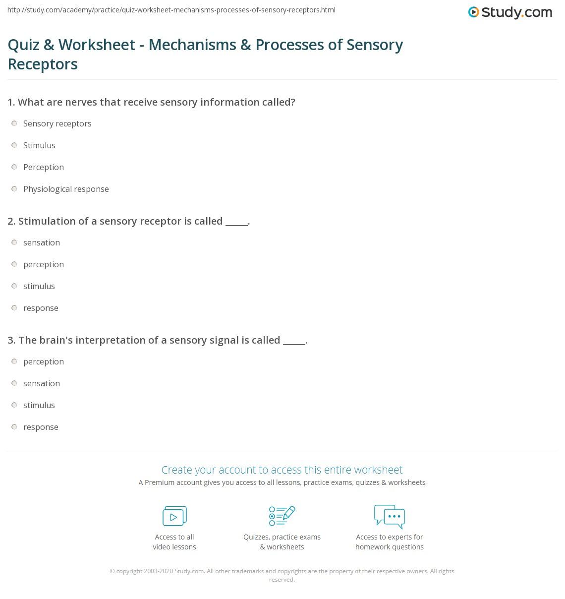 Cancer Worksheet Quizlet