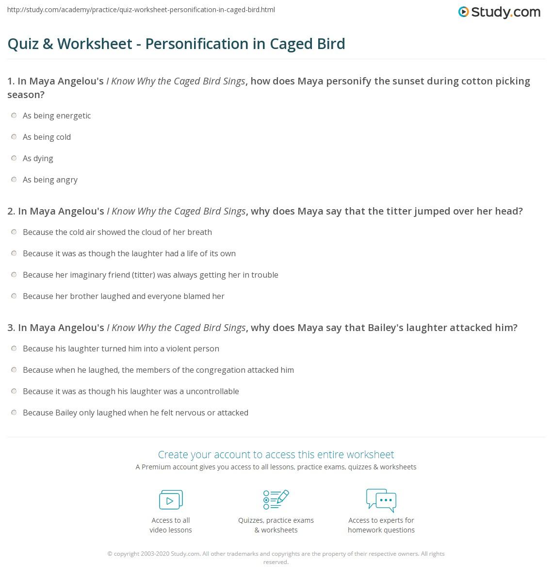 Maya Angelou 2nd Grade Worksheet