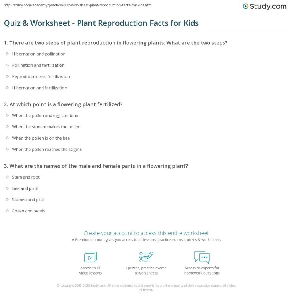 medium resolution of Quiz \u0026 Worksheet - Plant Reproduction Facts for Kids   Study.com