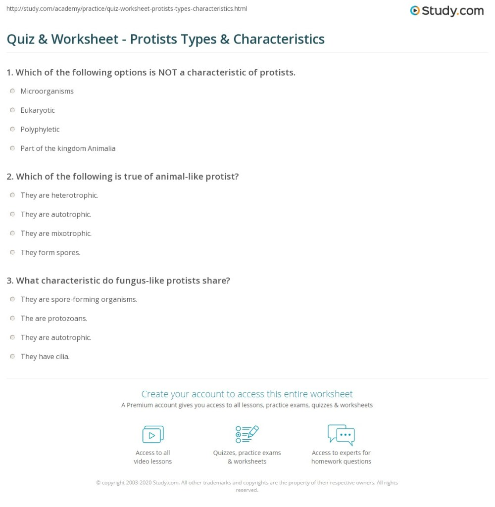medium resolution of print types of protists their characteristics worksheet