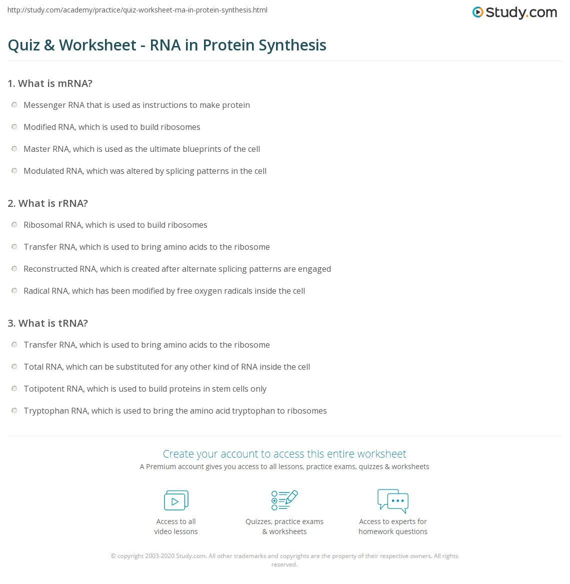 Dna Protein Synthesis Worksheet Answers