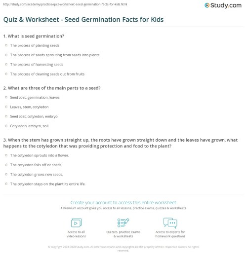 small resolution of Quiz \u0026 Worksheet - Seed Germination Facts for Kids   Study.com