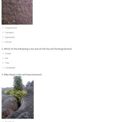 Horizon Diagram Soil Formation Tooth With Names Worksheet Worksheets Grass Fedjp Study Site