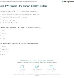 34 The Human Digestive System Worksheet Answers - Worksheet Project List [ 1169 x 1140 Pixel ]