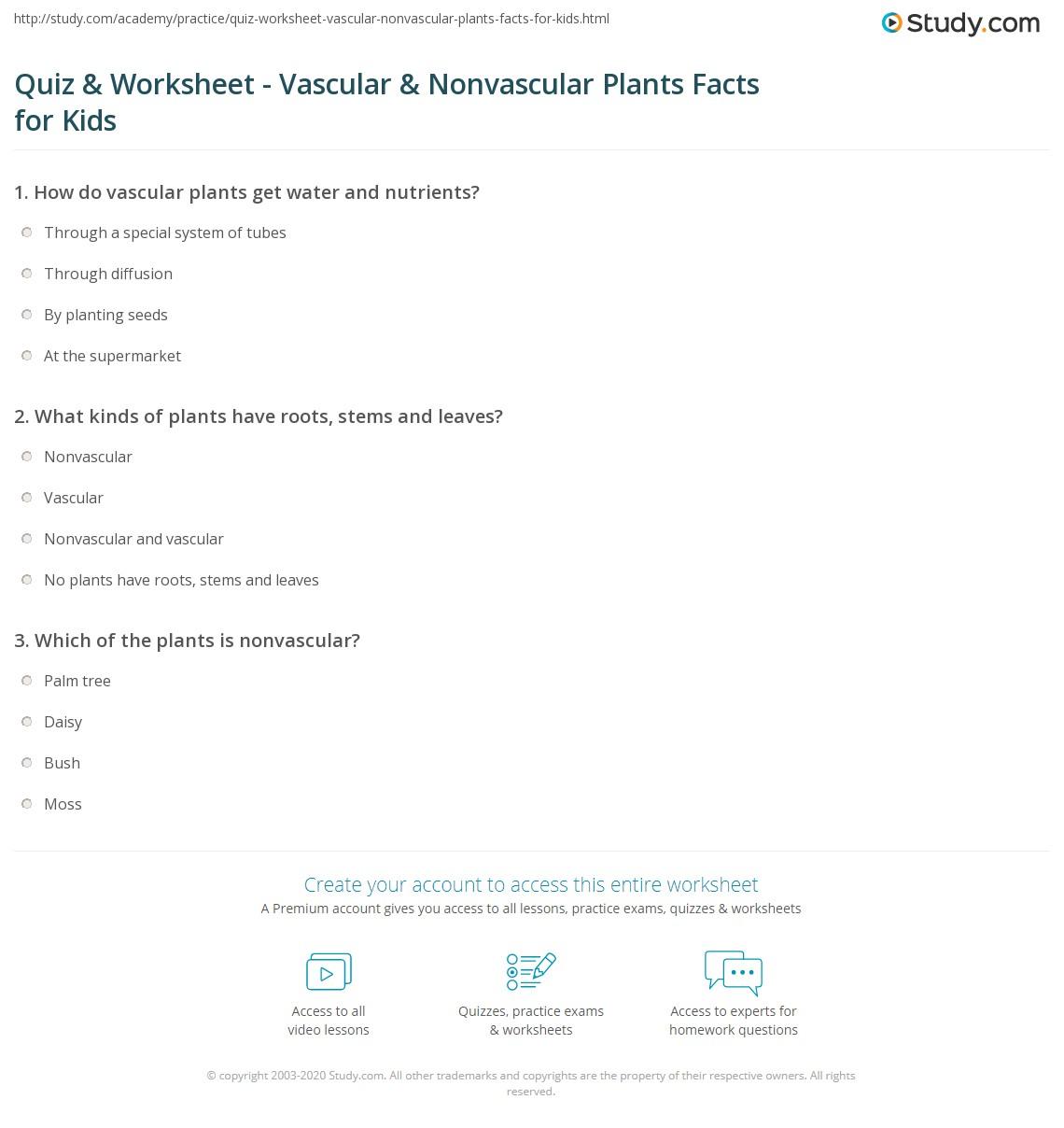 Vascular And Non Vascular Plants Worksheet