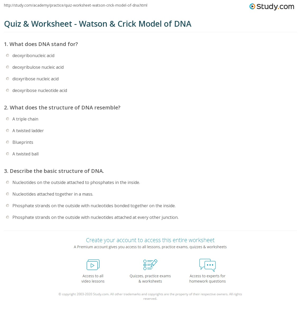 Describe The Chemical Makeup Of Dna