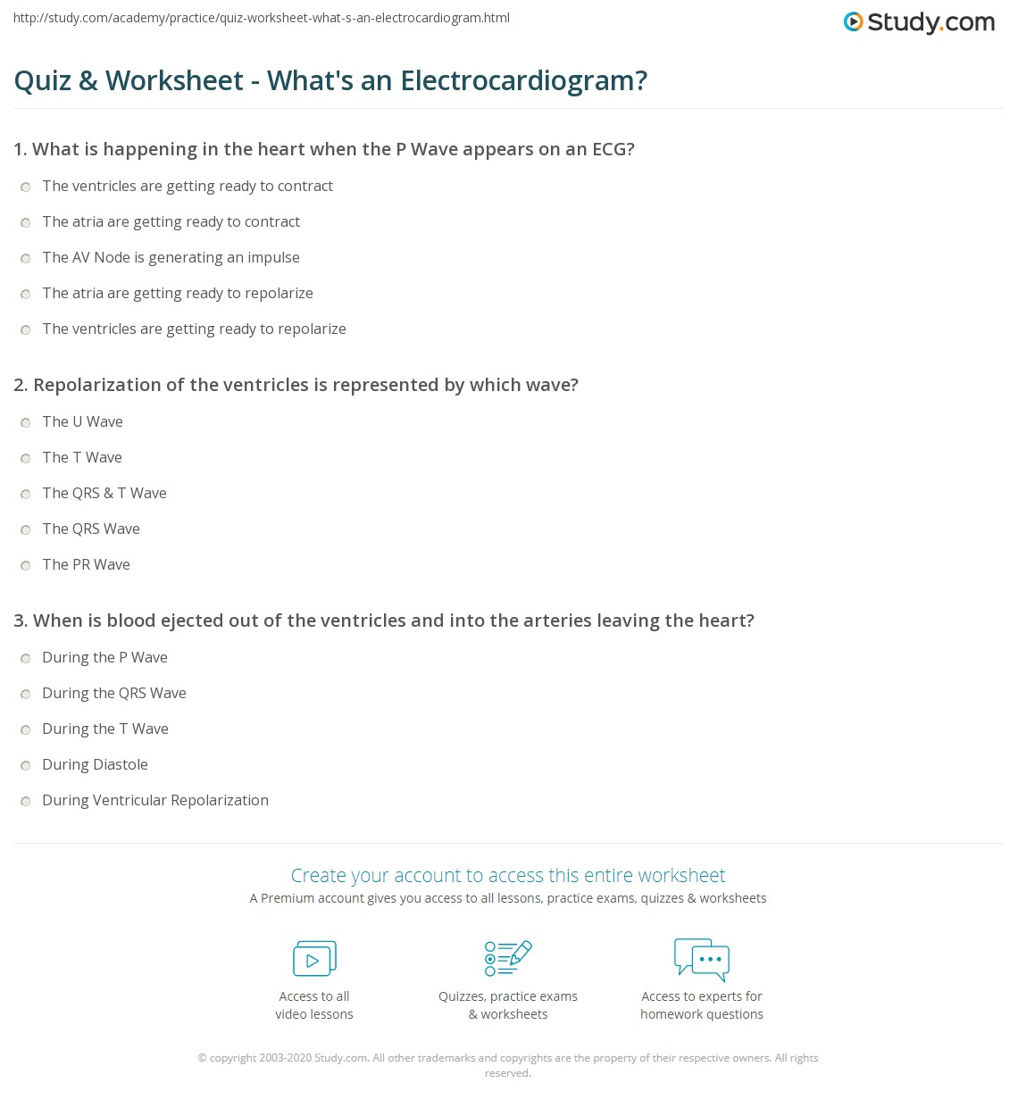 Heart Worksheet Answers