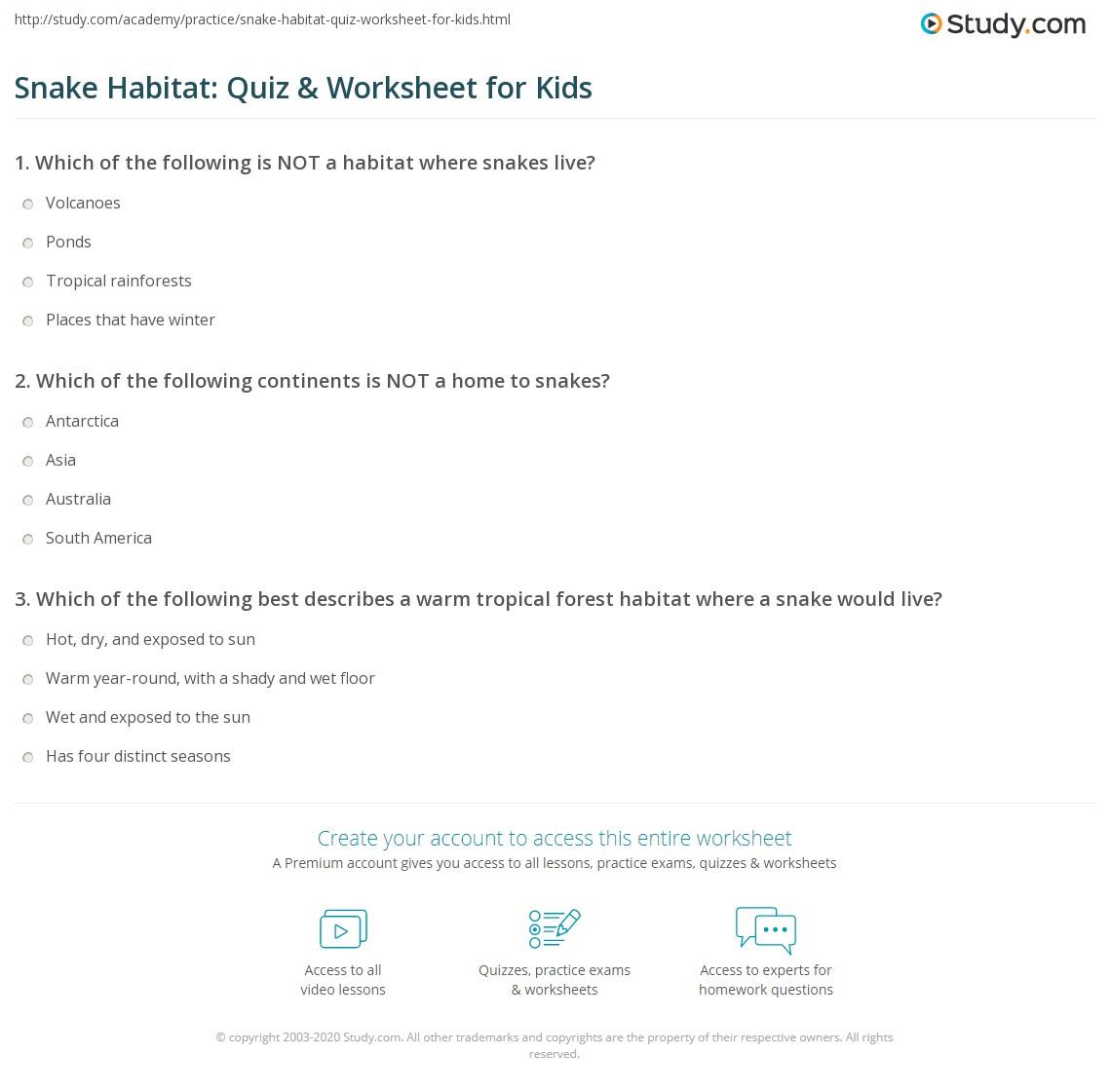 Snake Habitat Quiz Amp Worksheet For Kids