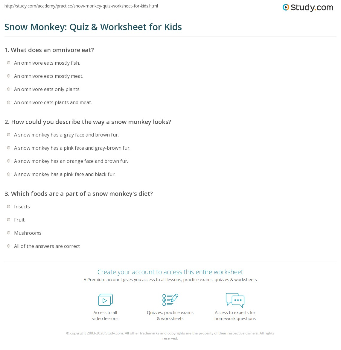 Snow Monkey Quiz Amp Worksheet For Kids