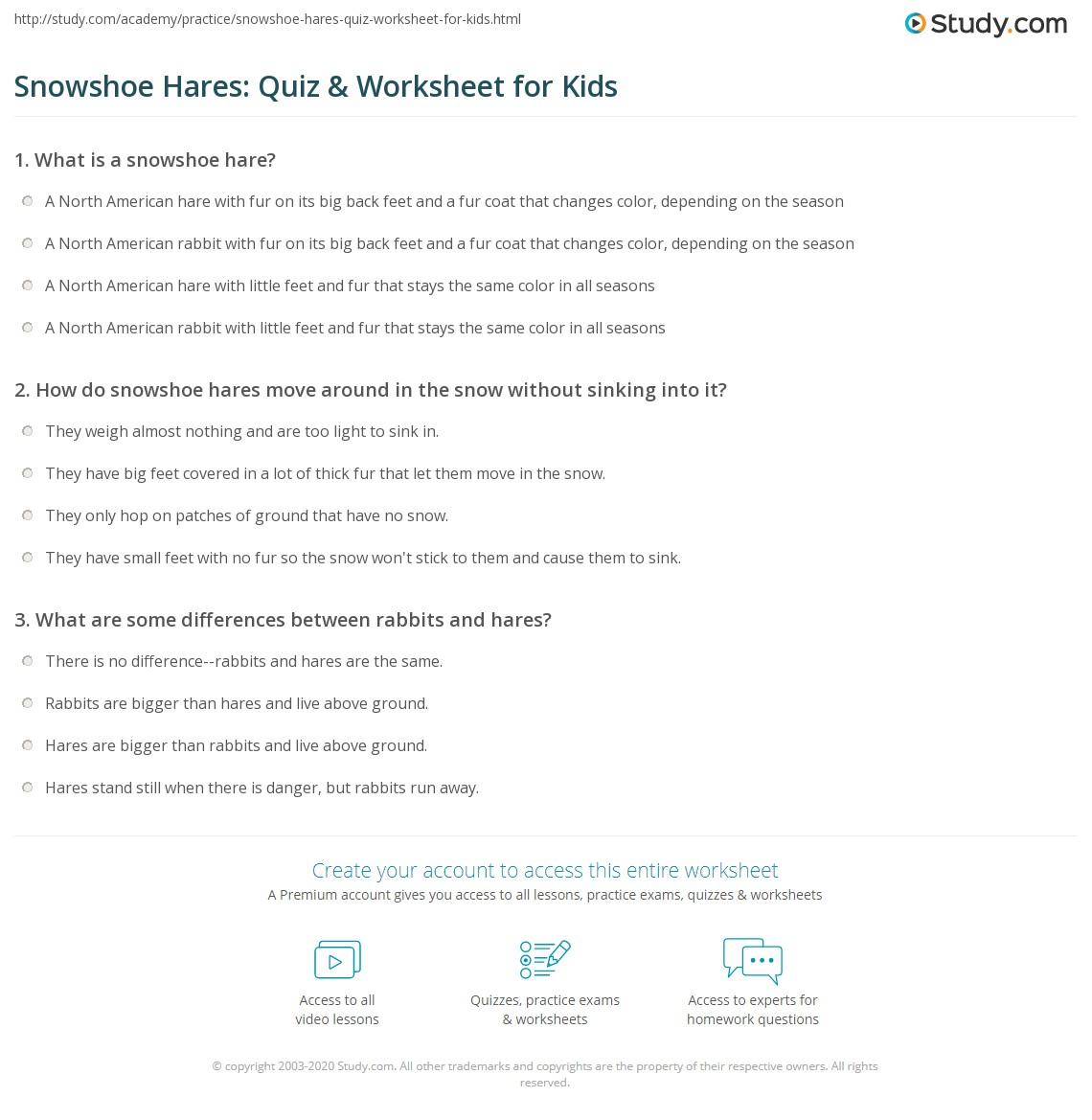 Snowshoe Hares Quiz Amp Worksheet For Kids