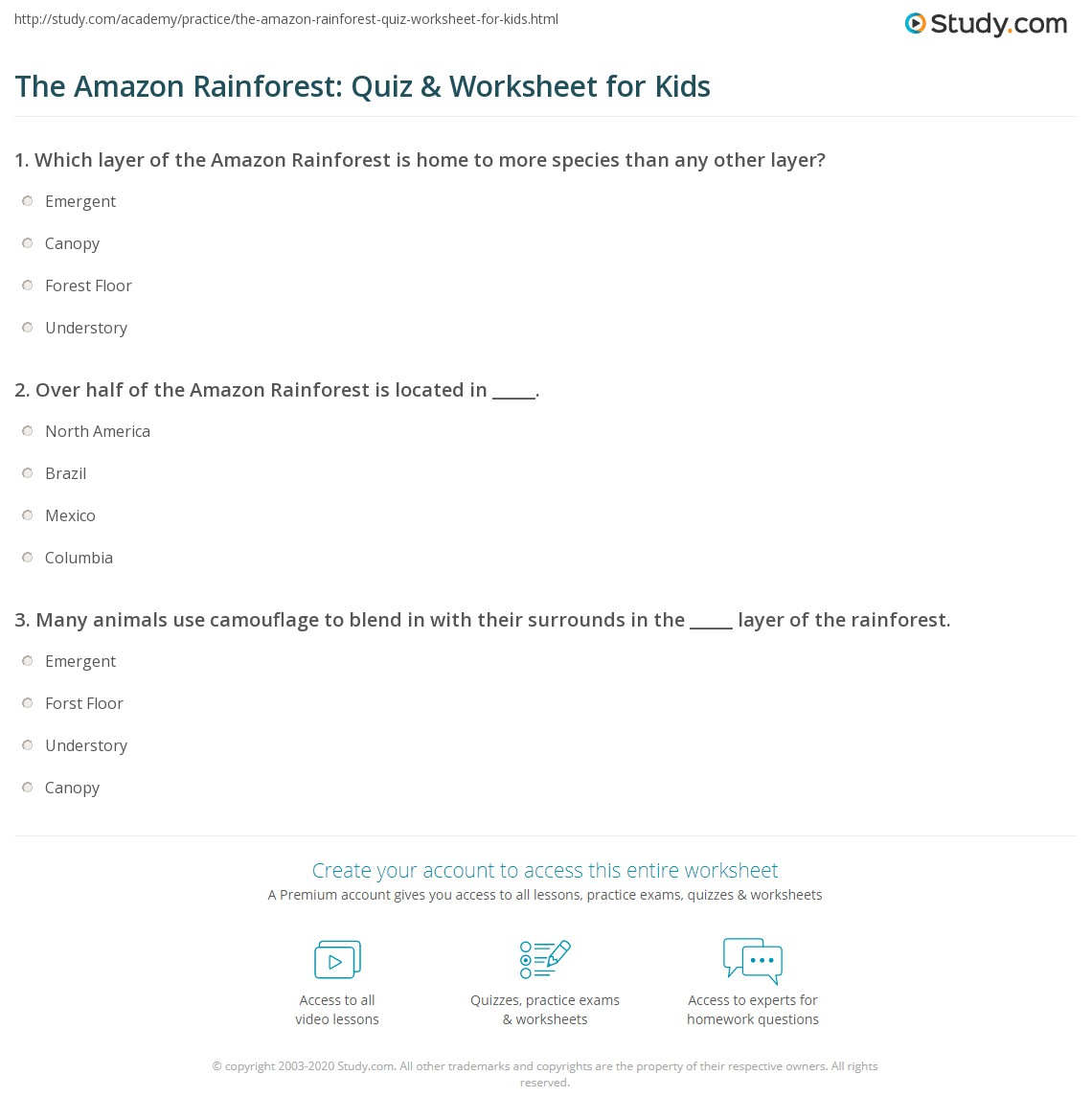 The Amazon Rainforest Quiz Amp Worksheet For Kids