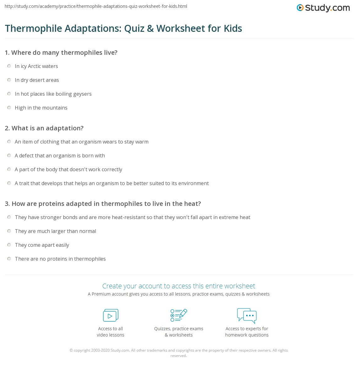 Thermophile Adaptations Quiz Amp Worksheet For Kids