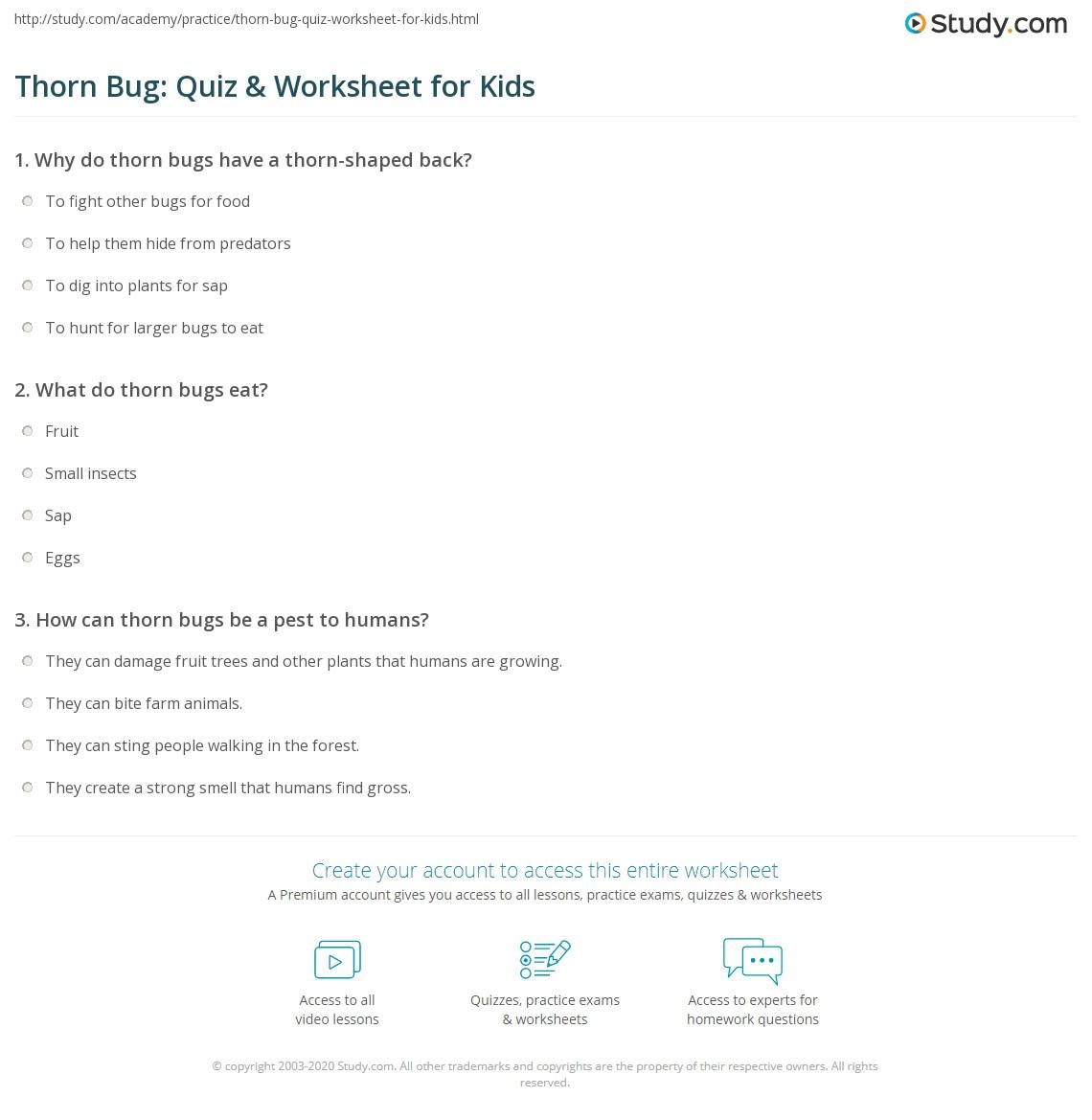 Thorn Bug Quiz Amp Worksheet For Kids