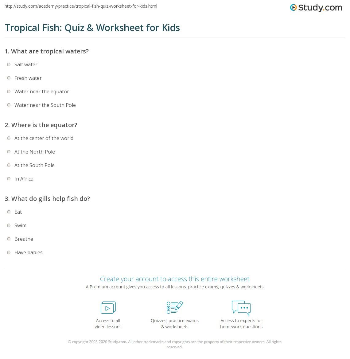 Tropical Fish Quiz Amp Worksheet For Kids
