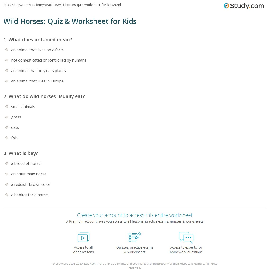 Wild Horses Quiz Amp Worksheet For Kids