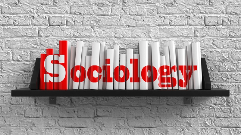 Image result for sociology courses