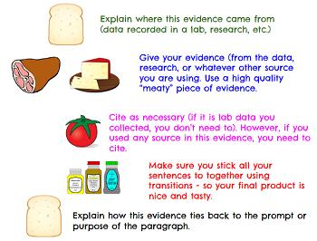 essay writing sandwich diagram maytag refrigerator thermostat schematic how to write good hook sentences kibin vanweringh help cefavis com pdf download as famu online
