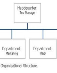As you can see companies use this type of structure when they want to organize their operations into departments grouping employees with shared skills and also what is organizational management types  examples rh study