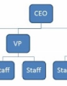 Org chart example also what is  flat structure in an organization definition rh study