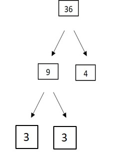 NES Elementary Education Subtest 2 (103): Practice & Study