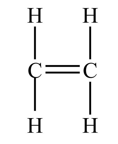 Which compound is a saturated hydrocarbon? ethane, ethene