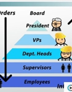 Hierarchy organization also organizational chart and definition  examples video rh study