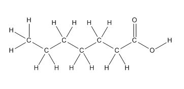 Draw heptanoic acid, which is the carboxylic acid needed