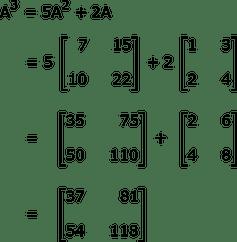 Cayley-Hamilton Theorem Definition, Equation & Example