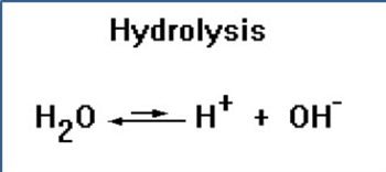 Hydrolysis: Definition, Reaction, Equation & Example