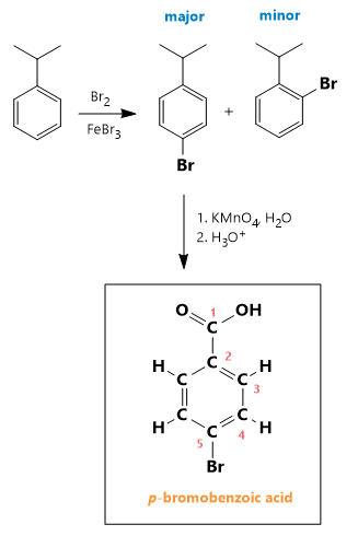 Draw the final major product generated when isopropyl