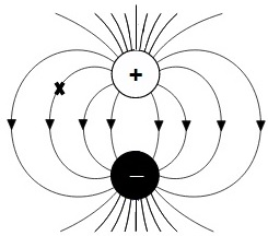 Determining & Representing Magnitude & Direction of