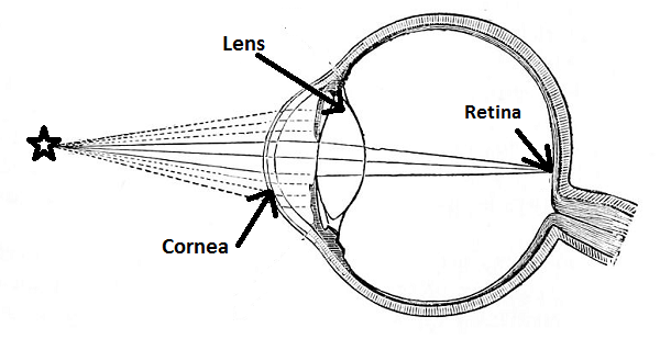 Lens of the Eye: Definition & Function Video with Lesson