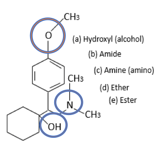 Label the functional groups in the antidepressant molecule