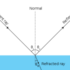 Reflection Ray Diagram Ks3 Toyota Wiring Diagrams Download What Is The Law Of Light Definition Overview Illustrated